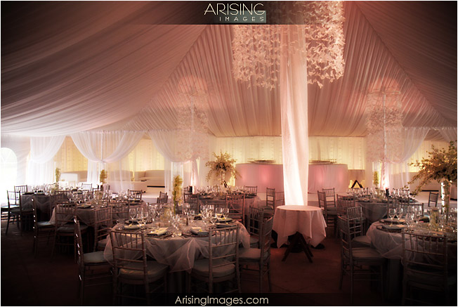 Weddings at meadowbrook mansion in rochester hills mi for The meadowbrook