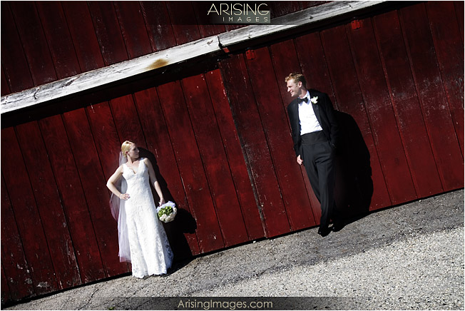backdrops for wedding receptions. and wedding receptions at
