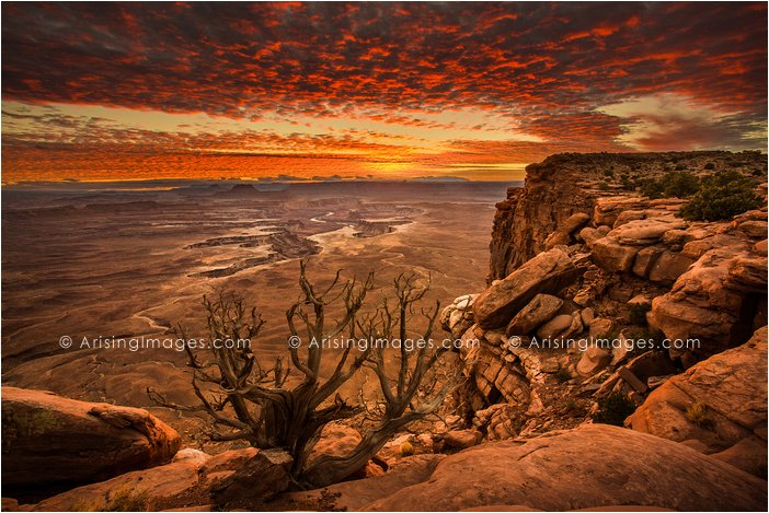Green River Overlook sunset, Canyonlands National Park