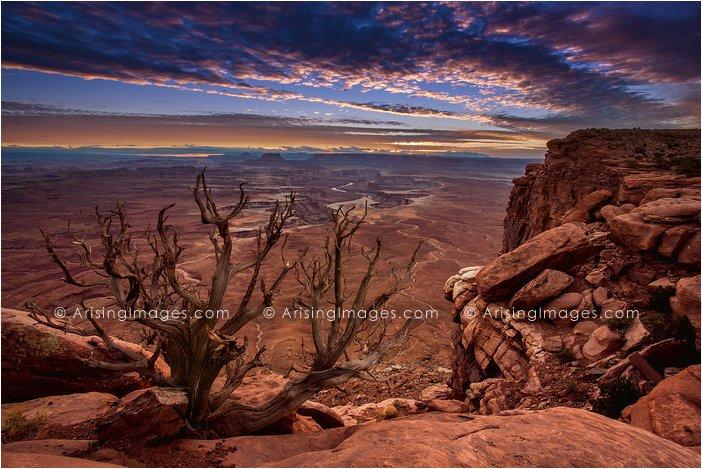 Green River Overlook sunset, Canyonlands National Park
