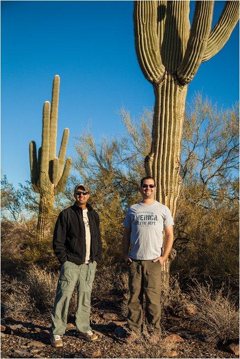 Saguaro Cactus in phoenix