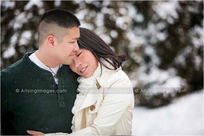 Auburn Hills engagement photography