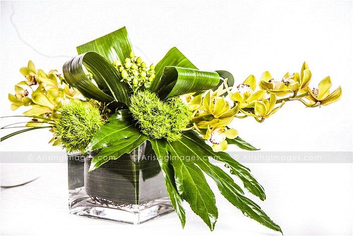 birmingham michigan florists