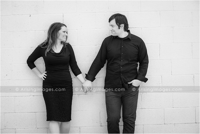 Southeast Michigan engagement photos