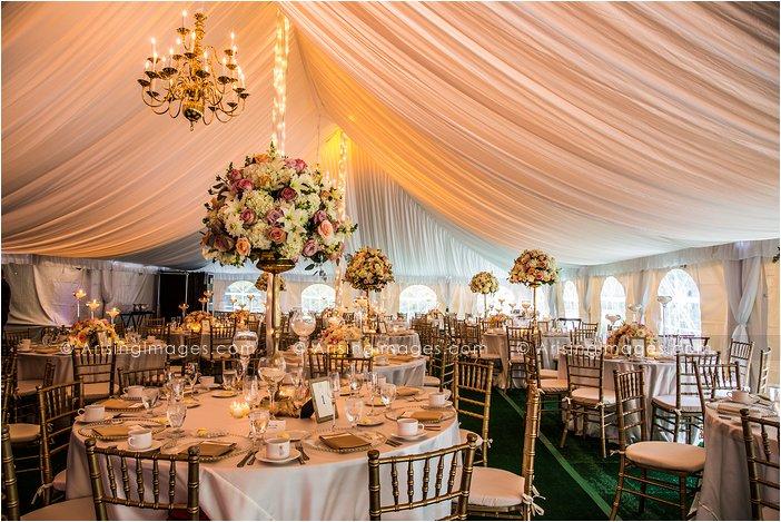 amazing wedding reception photos at cranbrook