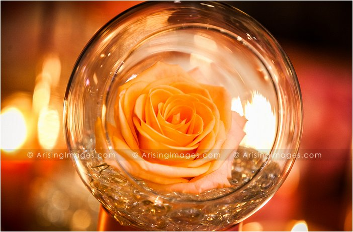 rose wedding decor