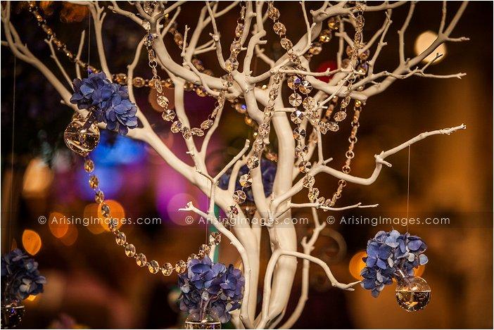 viviano bridal extravaganza 2014
