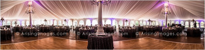 wedding reception at meadow brook hall
