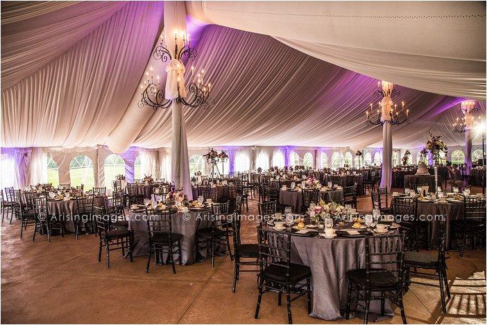 michigan outdoor tent wedding photography