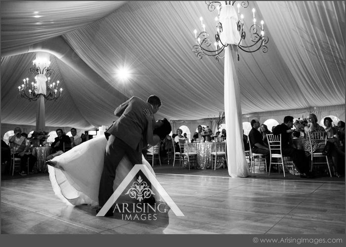best meadow brook wedding photographer