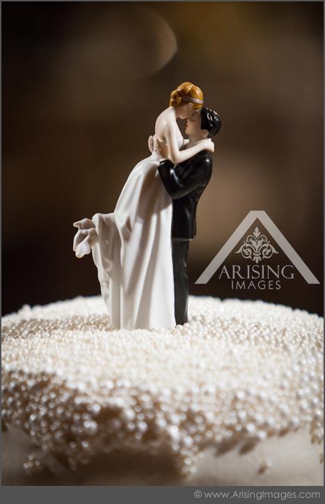 michigan wedding reception photgrapher