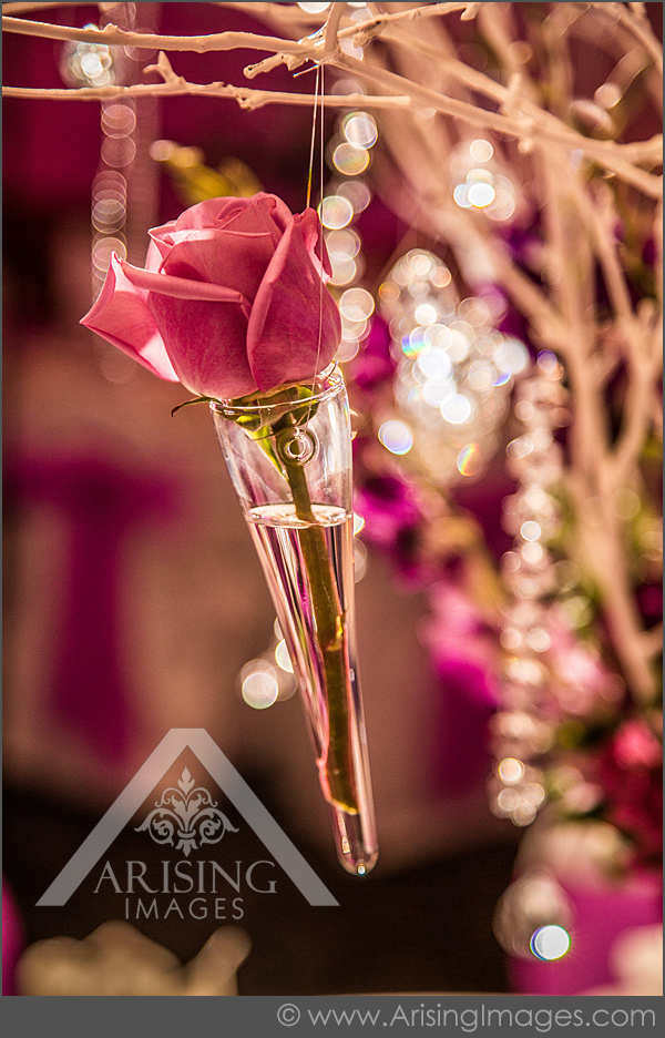 wedding reception photography in rochester michigan