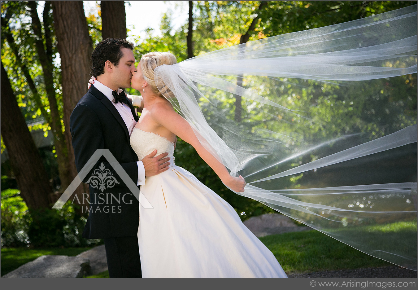 rochester michigan wedding pictures