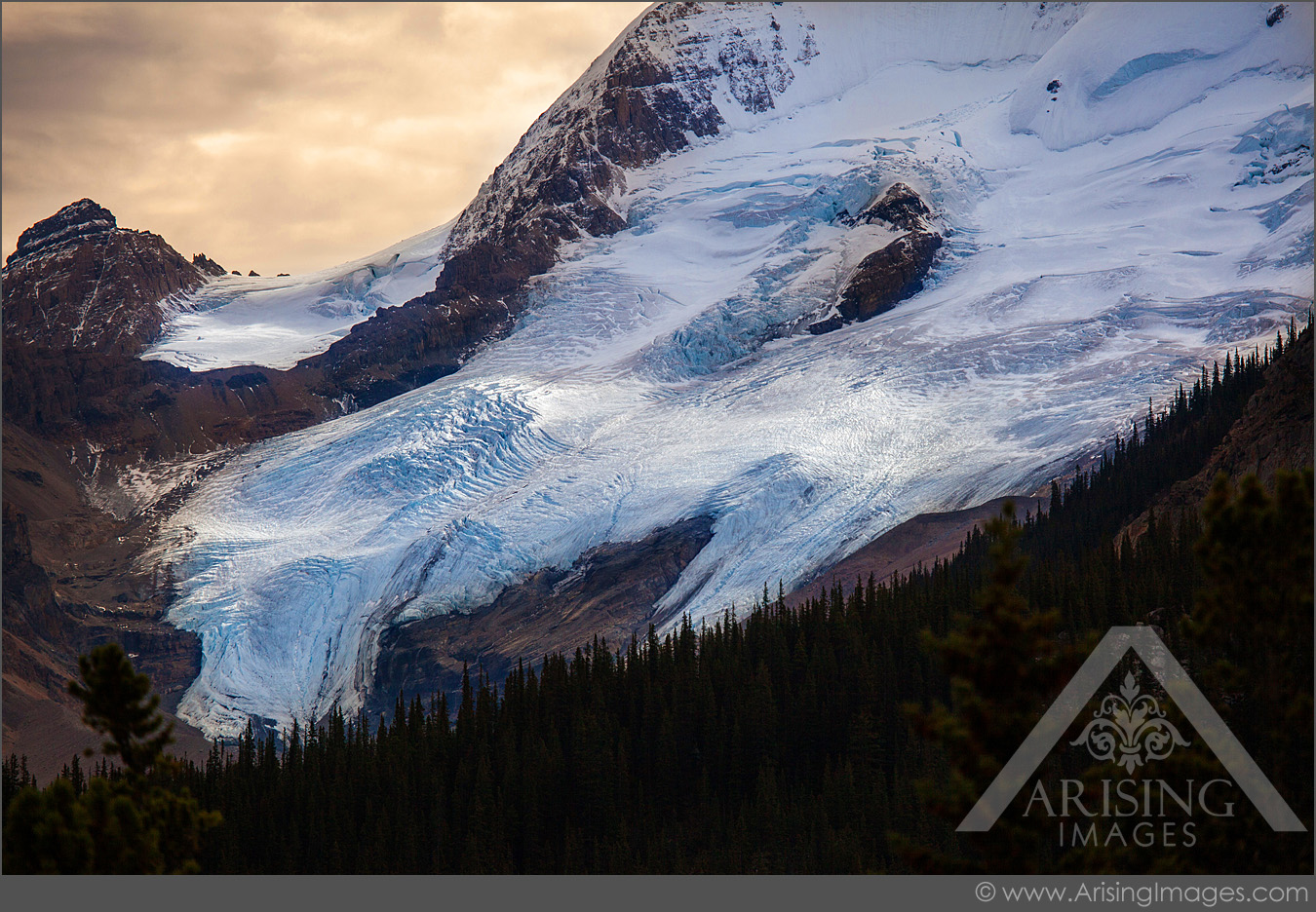 Columbia Icefield's glacier in Jasper National Park