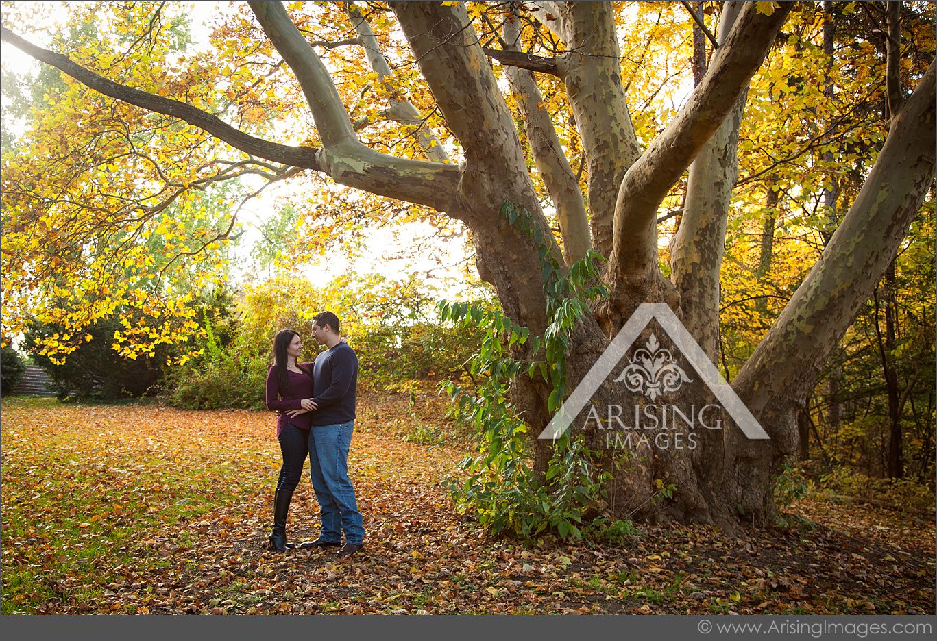 best michigan engagement pictures
