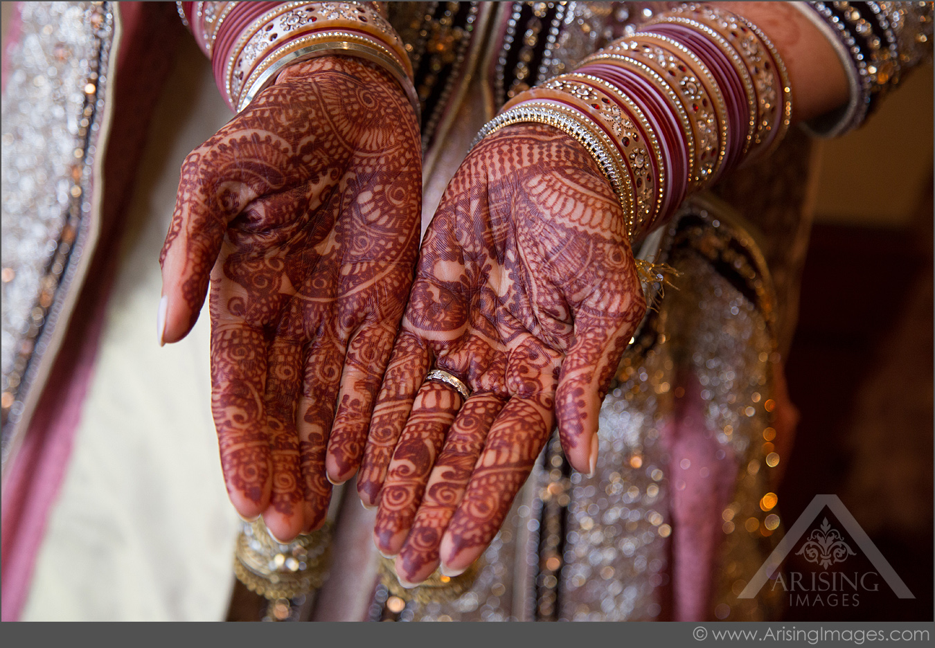 indian michigan wedding photography