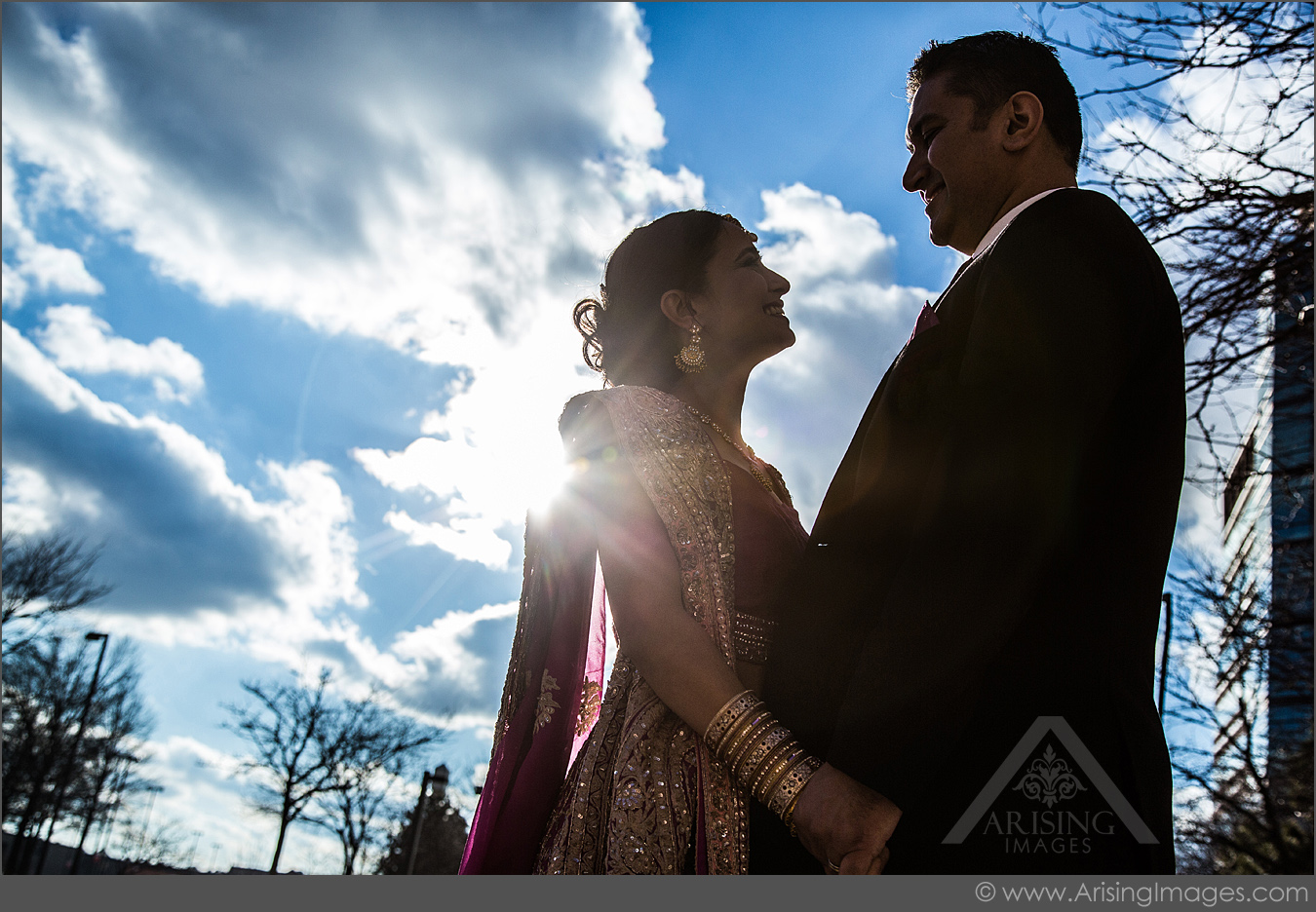rochester michigan wedding photography with arising images